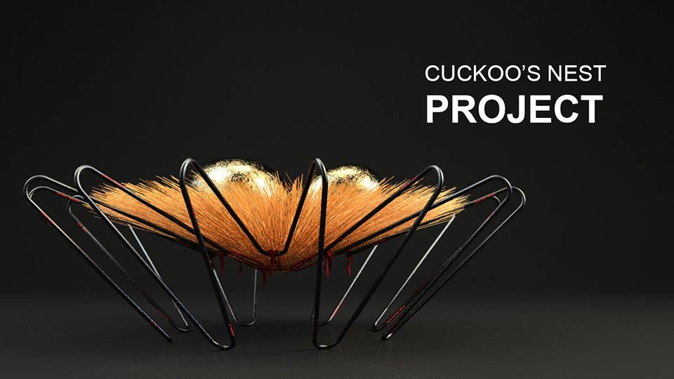 cuckoo's nest project